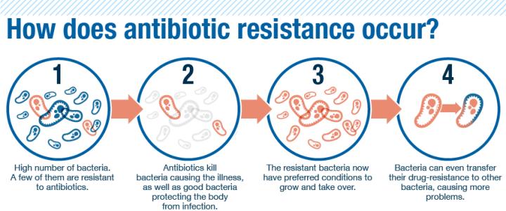antibiotic_resistance-a.png