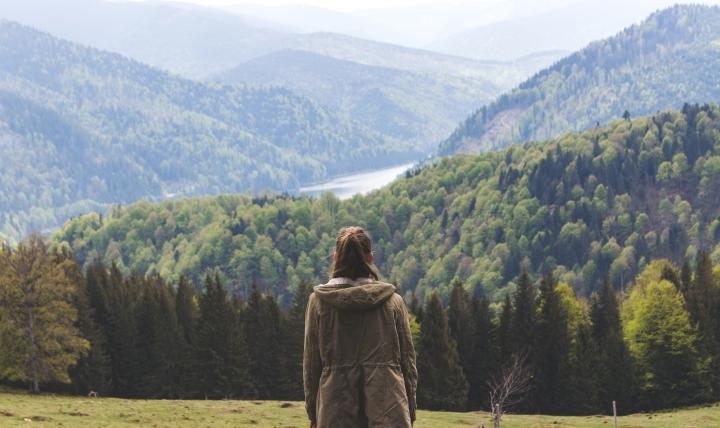 back-back-view-conifers-1061631-1.jpg